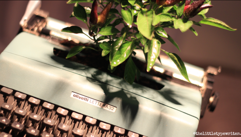 the-story-behind-the-little-typewriter-1