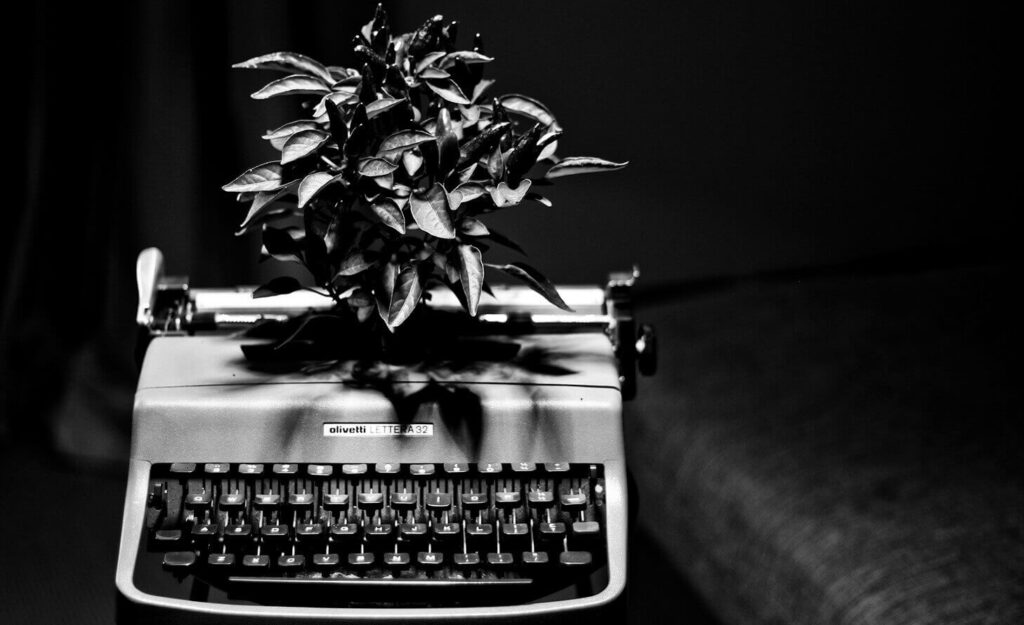 the-little-typewriter-Perth-copywriter